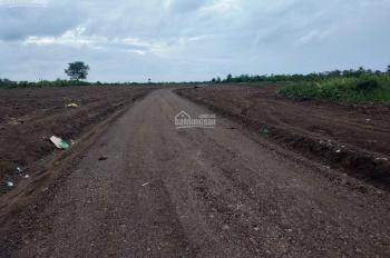 Bán đất sào xã Xuân Bảo, Cẩm Mỹ, Long Khánh, Đồng Nai, quy mô 3ha đã làm đường phân sào