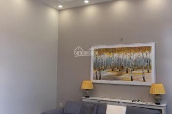 Cho thuê biệt thự cao cấp khu Phú Mỹ Hưng, q7