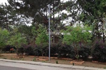 Cần bán lô đất khu quy hoạch An Sơn view rừng thông cực đẹp thành phố Đà Lạt, phường 4