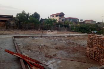 Chính chủ bán 02 lô đất siêu rẻ gần chợ và trường học cấp 1, 2 Việt Hùng, Đông Anh, Hà Nội