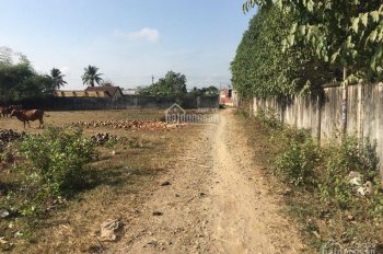 Chính chủ cần bán đất trạm thu phí Tân Ba, Thái Hòa, Tân Uyên, DT 5*45m, giá 1,6 tỷ. LH: 0933730448