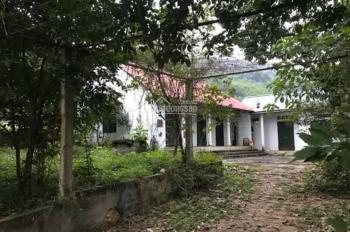 Bán 5000m2 thổ cư nhà vườn Lương Sơn, Hòa Bình, giá thỏa thuận
