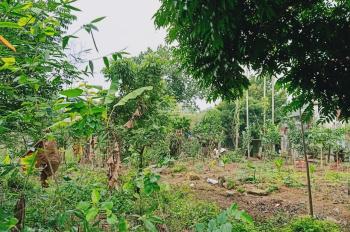 Bán lô góc hai mặt đường, diện tích 1.300m2, đất ở nhiều, đẹp chưa từng có tại Phú Mãn