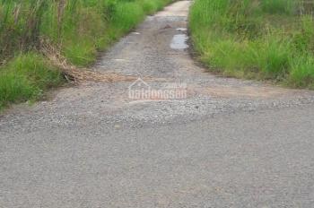 Cần bán 01 lô đất (cách mặt tiền đường Mậu Thân 500m)
