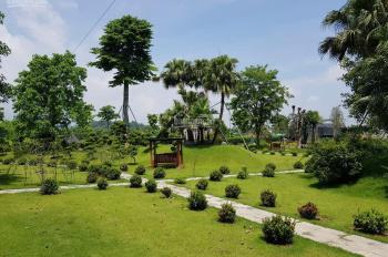 Bán lô đất dự án Phú Cát City, diện tích 180m2, giá thỏa thuận 2 bên. LH: 086.580.8338