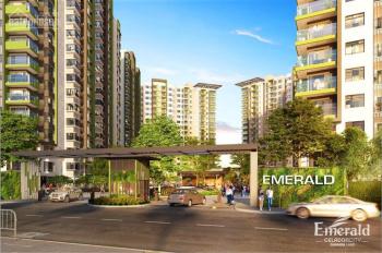 Cho thuê căn hộ chung cư Celadon City, Tân Phú 1PN DT 50m2, giá 8 triệu/th, LH: 0708095159 ngoan