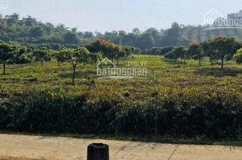 Bán đất thổ cư diện tích 2,2ha.tại xã tân vinh huyện lương sơn Hòa Bình