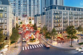 Chủ đầu tư mở bán dự án The Terra An Hưng với ưu đãi hấp dẫn lãi suất 0% các căn hộ từ 74 - 96m2