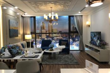 Chính chủ cần bán gấp căn hộ 2PN - 3PN tòa B, D Việt Đức Complex, giá chỉ 2,5 tỷ