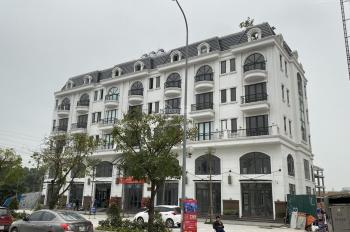 Chính chủ cần bán gấp CH30 tầng 19 DT102m2 căn góc BC ĐN DA TSG Sài Đồng, chỉ 27,5tr/m2 rẻ hơn CĐT