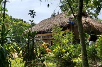 Bán gấp 42000m2 hoàn thiện đang làm homestay nghỉ dưỡng tại Lương Sơn, Hòa Bình