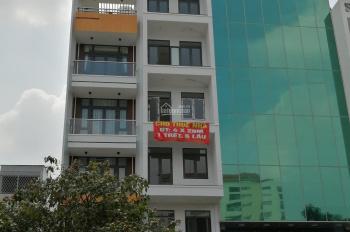 Cho thuê nguyên căn 1T 6L DT 4x20m MT đường Vườn Lài - Tân Phú, giá 30 tr/th