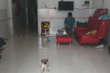 Gấp! Cần cho thuê phòng và nhà nguyên căn đẹp, giá rẻ tại Q. Bình Tân