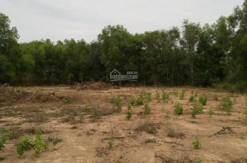 Cần bán đất mặt tiền đường Tăng Thị Hội - xã An Nhơn Tây - Củ Chi