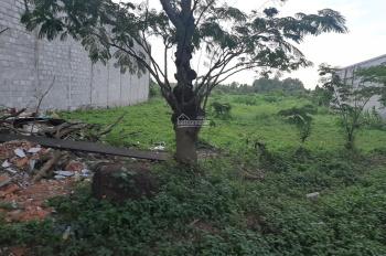 Thanh lý 5 nền đường Vĩnh Phú 10 trong KDC Vĩnh Phú, Thuận An, DT: 85m2/980 triệu. LH: 0968946014