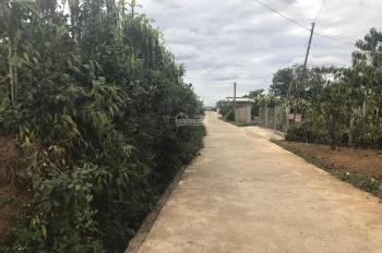 Bán đất 13x40m phường Lộc Tiến, Bảo Lộc, Lâm Đồng. Cách trung tâm Bảo Lộc 3km