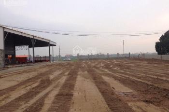Chính chủ cho thuê nhà xưởng hoặc mặt bằng 3000 - 5000m2 tại cụm CN Ninh Giang, Hải Dương