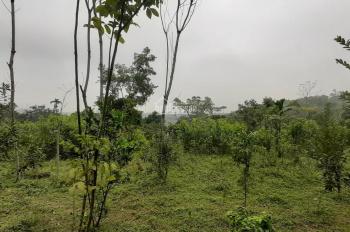 Bán 4400m2 giá 350 nghìn/1m2 tại Cư Yên, Lương Sơn, Hòa Bình
