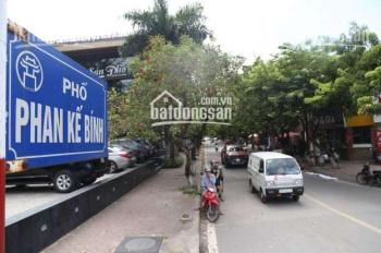 Cho thuê mặt bằng phố Phan Kế Bính diện tích 50m2, mặt tiền 4m, giá 25tr/th. LH 0338998398