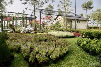 Cần ra 10 lô dự án Sala Garden, giá 70tr/lô, rẻ nhất thị trường, LH 0986127338