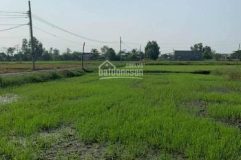 Đất rẻ Hòa Khánh Nam, ĐH LA, 5x27m thổ. Giá quá rẻ chỉ 600 triệu