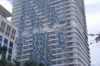 TMS Quy Nhơn chính chủ bán gấp căn hộ D - 01 view trọn vịnh Quy Nhơn đẹp nhất dự án, nhận nhà ngay