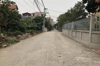 Chính chủ cần bán 65m2 đất thổ cư tại An Đà, Đặng Xá, Gia Lâm, Hà Nội đường 6m giá rẻ LH 0839238666