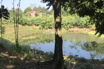 Bán khuôn viên nhà vườn hoàn thiện tại Lương Sơn Hòa Bình, 1ha giá cực rẻ