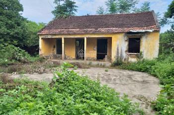 Cần bán 3114m2 đất làm trang trại nhà vườn, khu nghỉ dưỡng cuối tuần tại xã Liên Sơn, Lương Sơn, HB