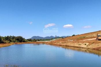 Đất nền nghỉ dưỡng view hồ, đồi chè giá mềm 350 triệu