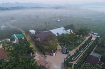 Bán gấp lô đất nền ở Bảo Lộc giá chỉ 290 triệu, ngay mặt tiền đường Lý Thái Tổ
