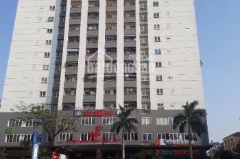 Bán chung cư Tây Sơn, Nguyễn Lương Bằng, Hồ Đắc Di, 132m2, 3PN, 2WC, căn hộ mới tinh, giá hợp lý