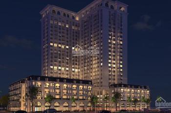 Bán 2 căn penthouse siêu sang và 1 căn duplex dự án TSG Lotus Long Biên