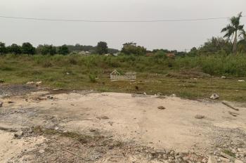 Bán 11,778.6m2 đất tại đường Huỳnh Thị Huề, Thái Mỹ, Củ Chi, TP.HCM