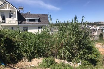 Đất xây biệt thự view cực đẹp tại P9 Đà Lạt cần bán gấp đi định cư