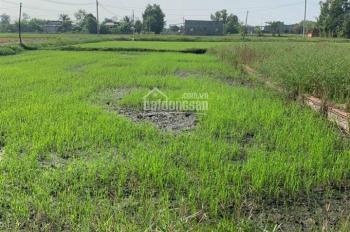 Cần bán đất Hòa Khánh Nam, Đức Hòa, Long An