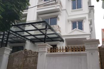 Cho thuê biệt thự song lập mới hoàn thiện phong cách tân cổ điển rất đẹp