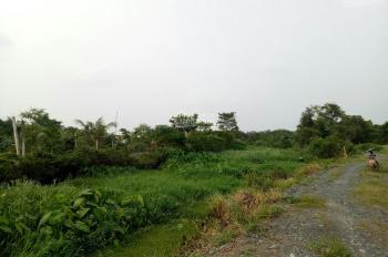 Đất vườn 500m2 giá 1,5 tỷ, đường 464, Sông Lu, Trung An, Củ Chi