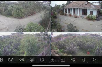 Bán trang trại, vườn tại ấp 7, đường Hương Lộ 6, Thạnh Phú - Vĩnh Cửu - Đồng Nai