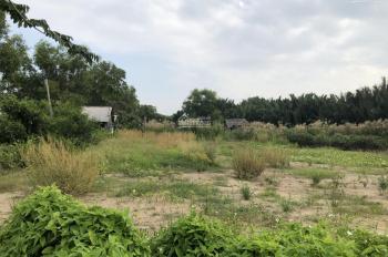 Đất thổ vườn Nhà Bè 1807m2, SHR, không quy hoạch, gần 2 khu công nghiệp lớn, giá 2,6 tỷ