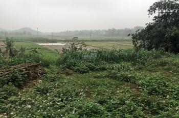 Nhượng 9 sào DT 3200m2 đất nhà vườn view cánh đồng tại Vân Hoà, Ba Vì
