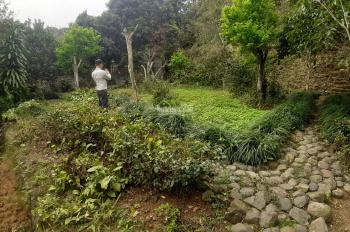 Cần bán gấp 3500m2 KV hoàn thiện 800m2 thổ cư phù hợp làm nhà vườn nghỉ dưỡng tại Lương Sơn