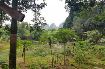 Cần thanh lý 1ha đất khuôn viên thiện, có ao thả cá, tại Liên Sơn, Lương Sơn, Hòa Bình