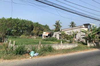 Bán đất đường Nguyễn Thị Rành, Củ Chi, 1131 m2, 20x58m, giá 6,6 tỷ đồng