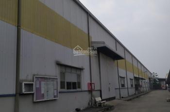 Cho thuê kho xưởng 6800m2, giá tốt trong khu công nghiệp Tân Tạo, phường Tân Tạo, quận Bình Tân