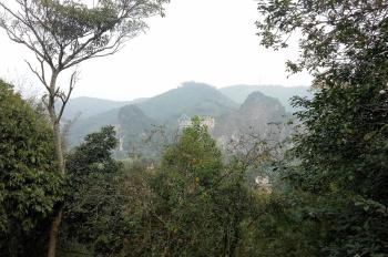 Bán đất Lương Sơn Hòa Bình 3500m2 khuôn viên cơ bản hoàn thiện cách QL6 250m, tường bao, cây ăn quả