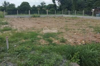 Cần bán gấp lô đất mặt tiền đường số 489, xã Phạm Văn Cội, huyện Củ Chi