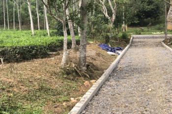 Cần bán đất để làm trang trại nhà vườn diện tích 3600m2 tại thôn mít Yên Bài, Ba Vì, Hà Nội