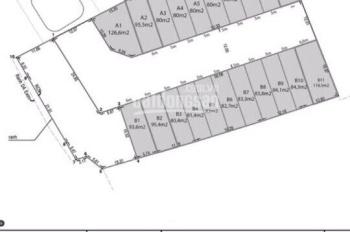 Bán đất nền sổ đỏ Park Riverside Q9, XD tự do, sổ đỏ, DT 80m2, hướng ĐN, giá 4.45 tỷ