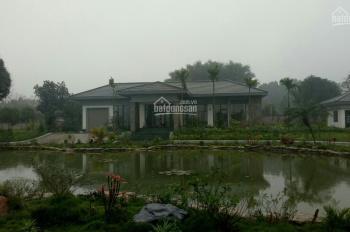 Bán khuôn viên hoàn thiện Lương Sơn, Hòa Bình, 5200m2 lô góc 2 mặt đường, giá đẹp
